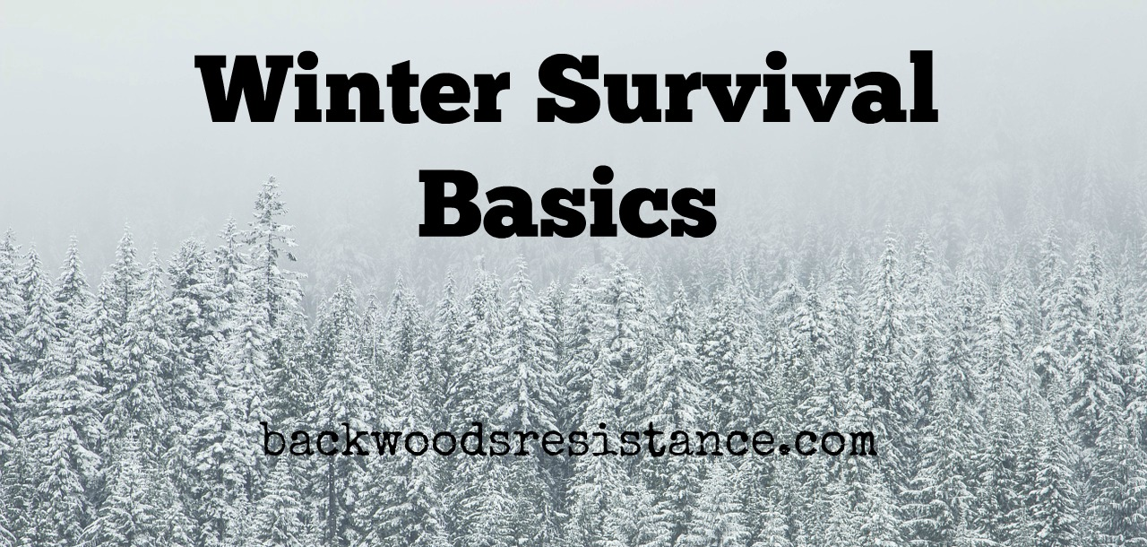 Winter Survival Basics