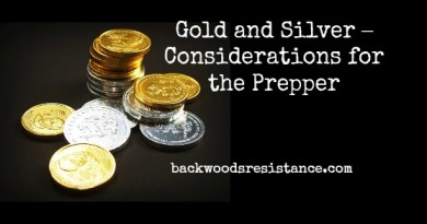 Gold and Silver – Considerations for the Prepper