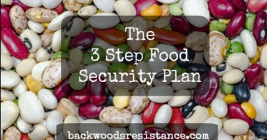 3 Step Diversified Food Security Plan