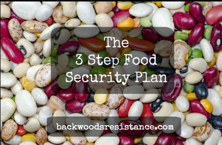 3 Step Food Security Plan