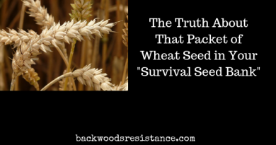 "The Truth About That Packet of Wheat Seed in Your ""Survival Seed Bank"""