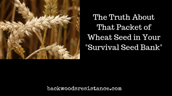 The Truth About That Packet of Wheat Seed in Your _Survival Seed Bank_